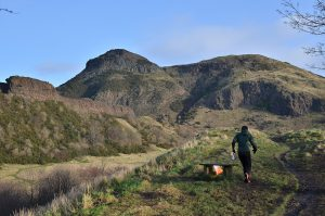 Orienteer near Arthur's Seat enjoying the great outdoors