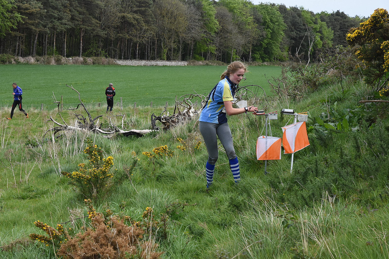 Young orienteer connecting with nature in the Scottish outdoors
