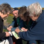 4 people comparing notes over an orienteering map in the great outdoors