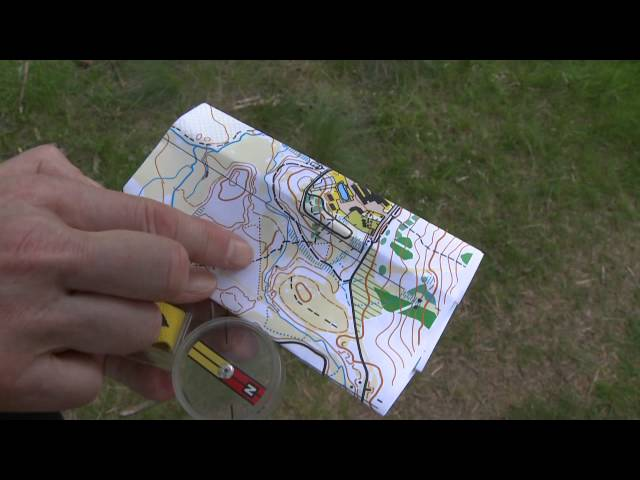 Map reading an orienteering map in the great outdoors and getting close to nature