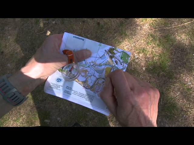 Learning how to navigate on an orienteering course in the Scottish outdoors