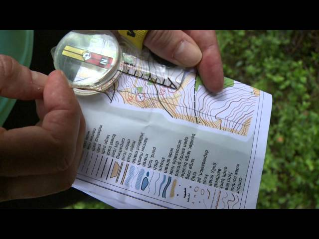 Navigating at a Scottish Orienteering event in the great outdoors of Scotland